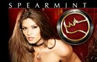 Spearmint Rhino of Los Angeles